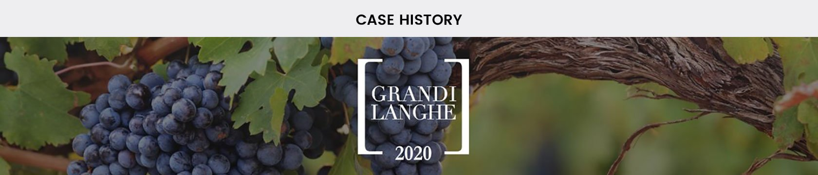 Clappit-Expo-Exhibitor-Case-History-Grandi-Langhe-Top-01